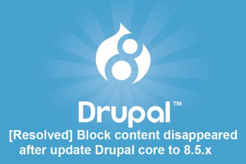 Drupal 8 block content disappeared after update Drupal core to 8.5.x